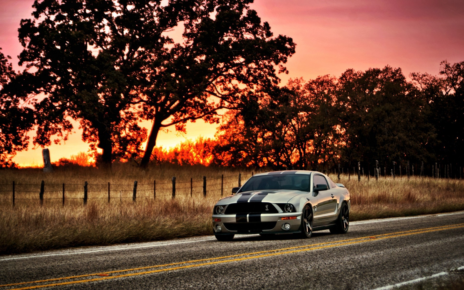 1920x1200 - Ford Mustang GT500 Wallpapers 34