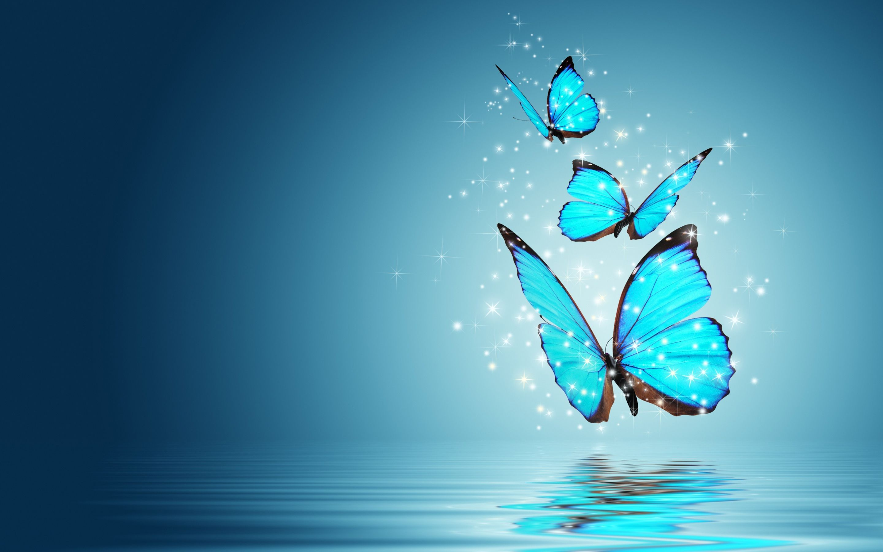 2880x1800 - Pretty Butterfly Backgrounds 5