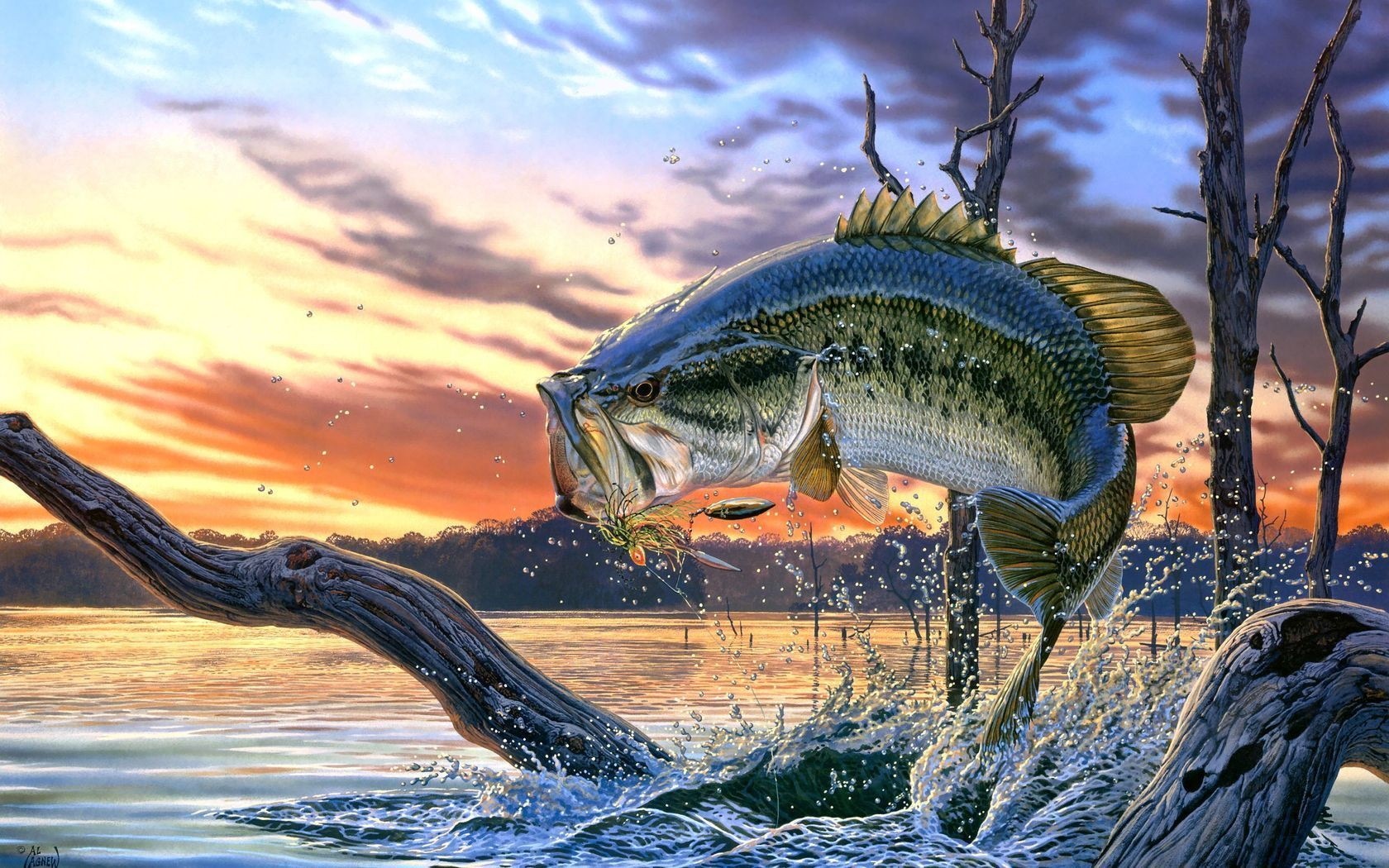 1680x1050 - Fishing Wallpapers 25