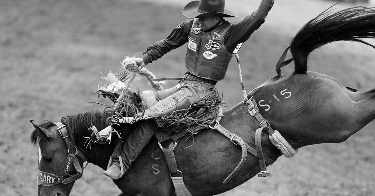 1200x628 - Rodeo Wallpapers 27