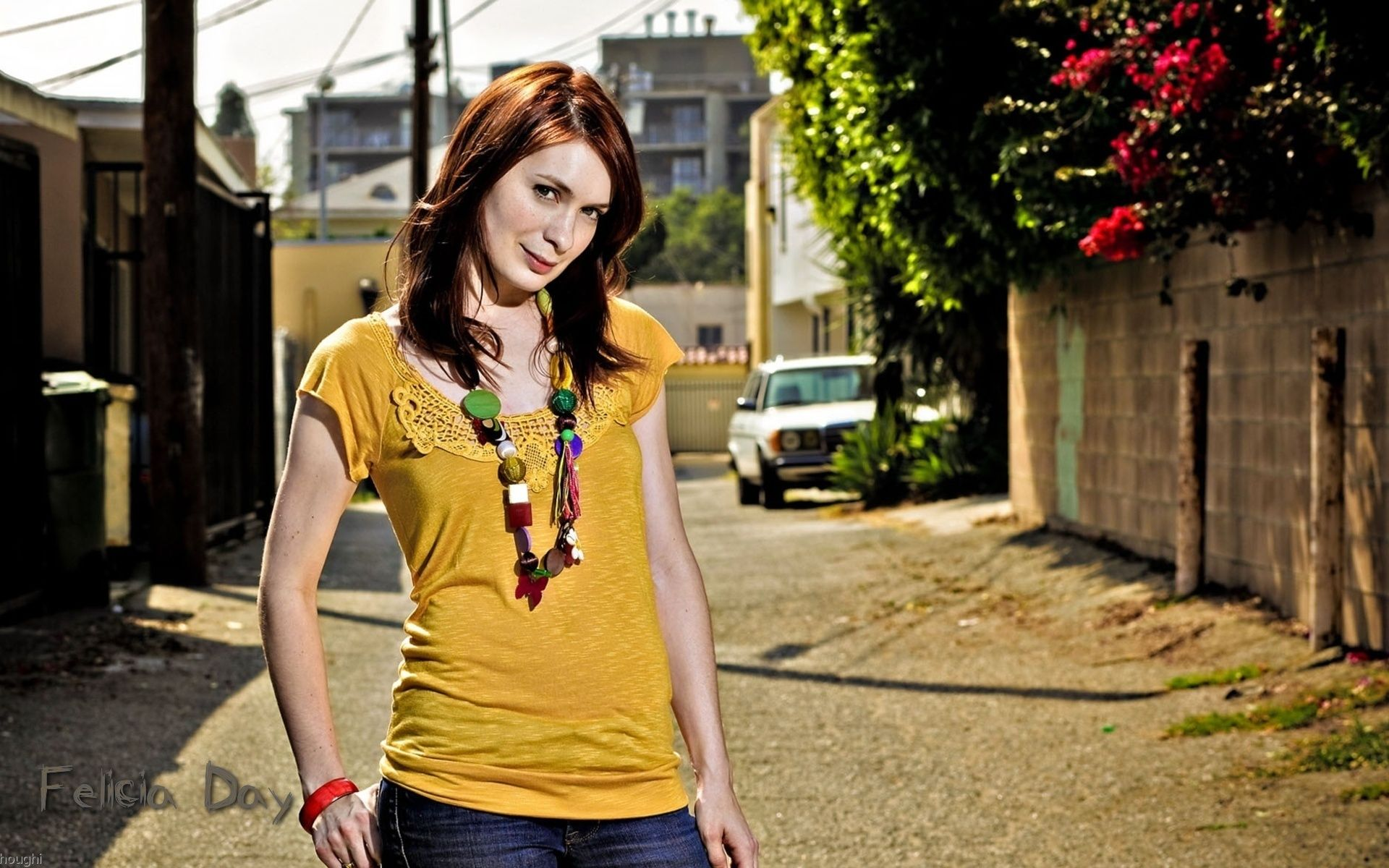 1920x1200 - Felicia Day Wallpapers 14