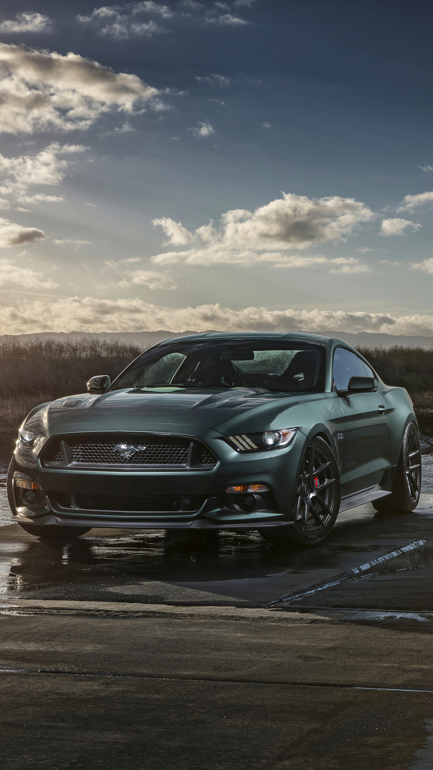 1440x2560 - Ford Mustang GT Wallpapers 29