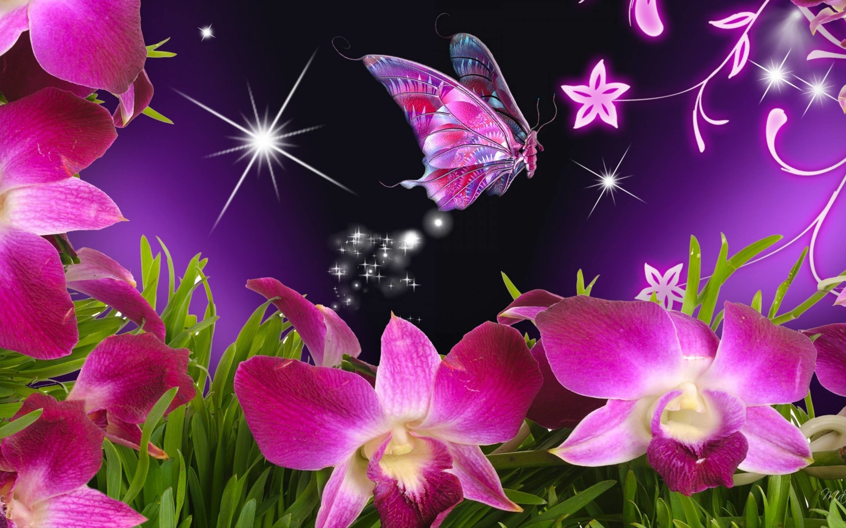 2880x1800 - Pretty Butterfly Backgrounds 1