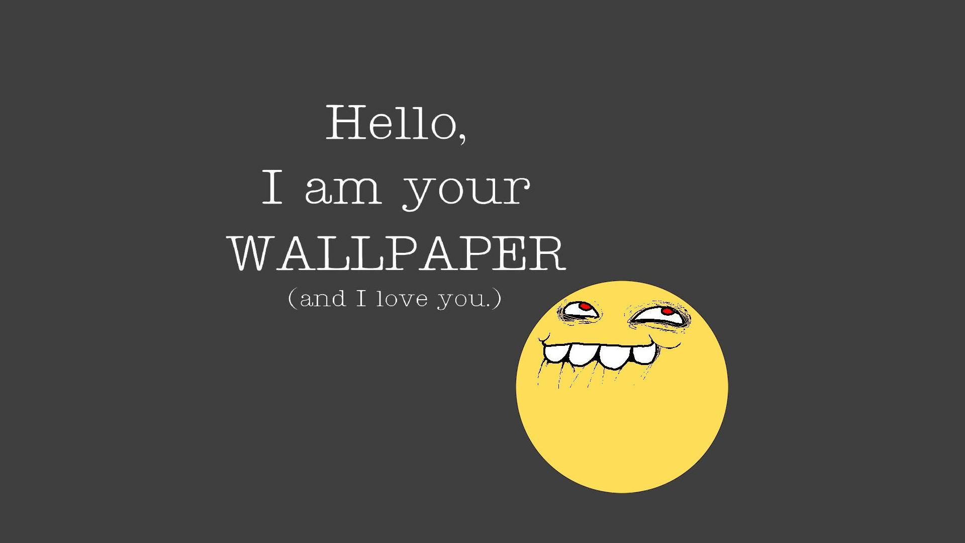 Funny Wallpapers 28 Images Dodowallpaper
