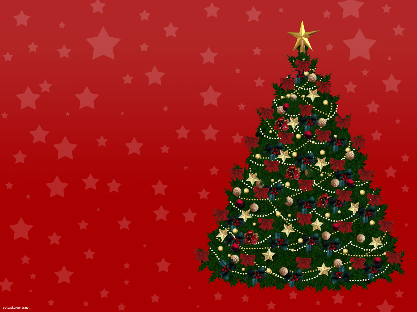 1600x1200 - Christmas Trees Backgrounds 29