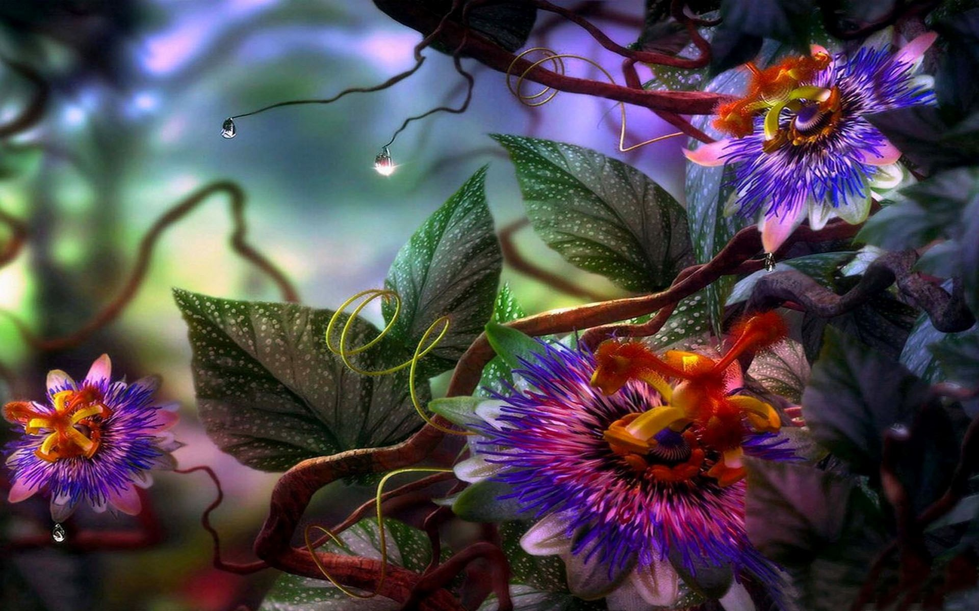 1920x1200 - Passion Flower Wallpapers 3