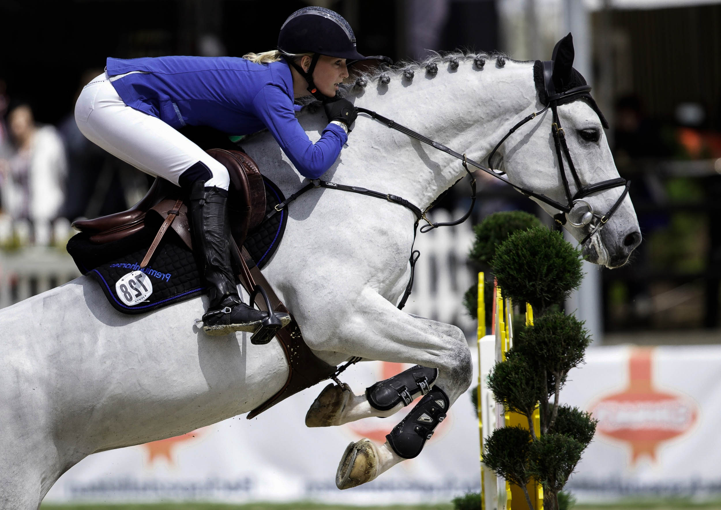 2500x1768 - Show Jumping Wallpapers 14
