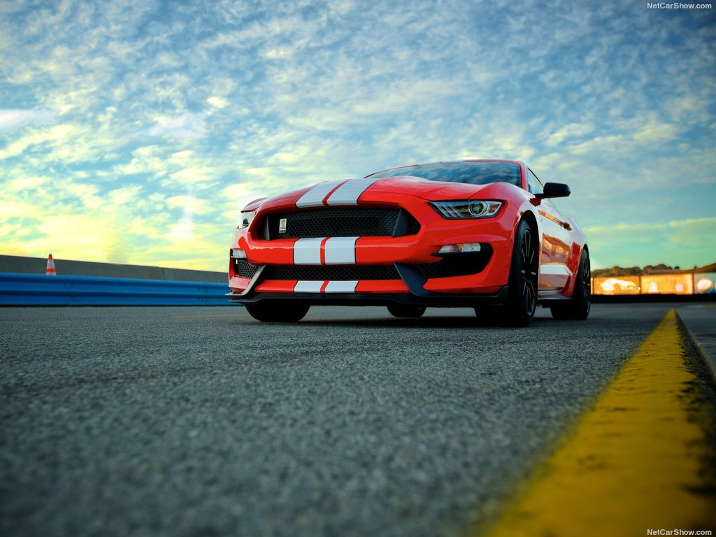 1024x768 - Shelby Mustang GT 350 Wallpapers 8