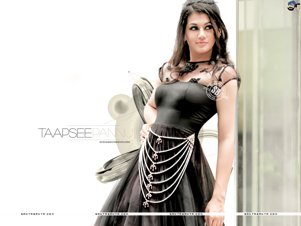 1024x768 - Tapsee pannu Wallpapers 34