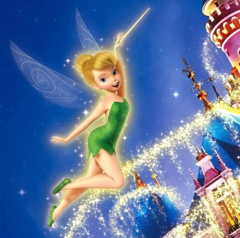 810x804 - Tinkerbell Pictures 3