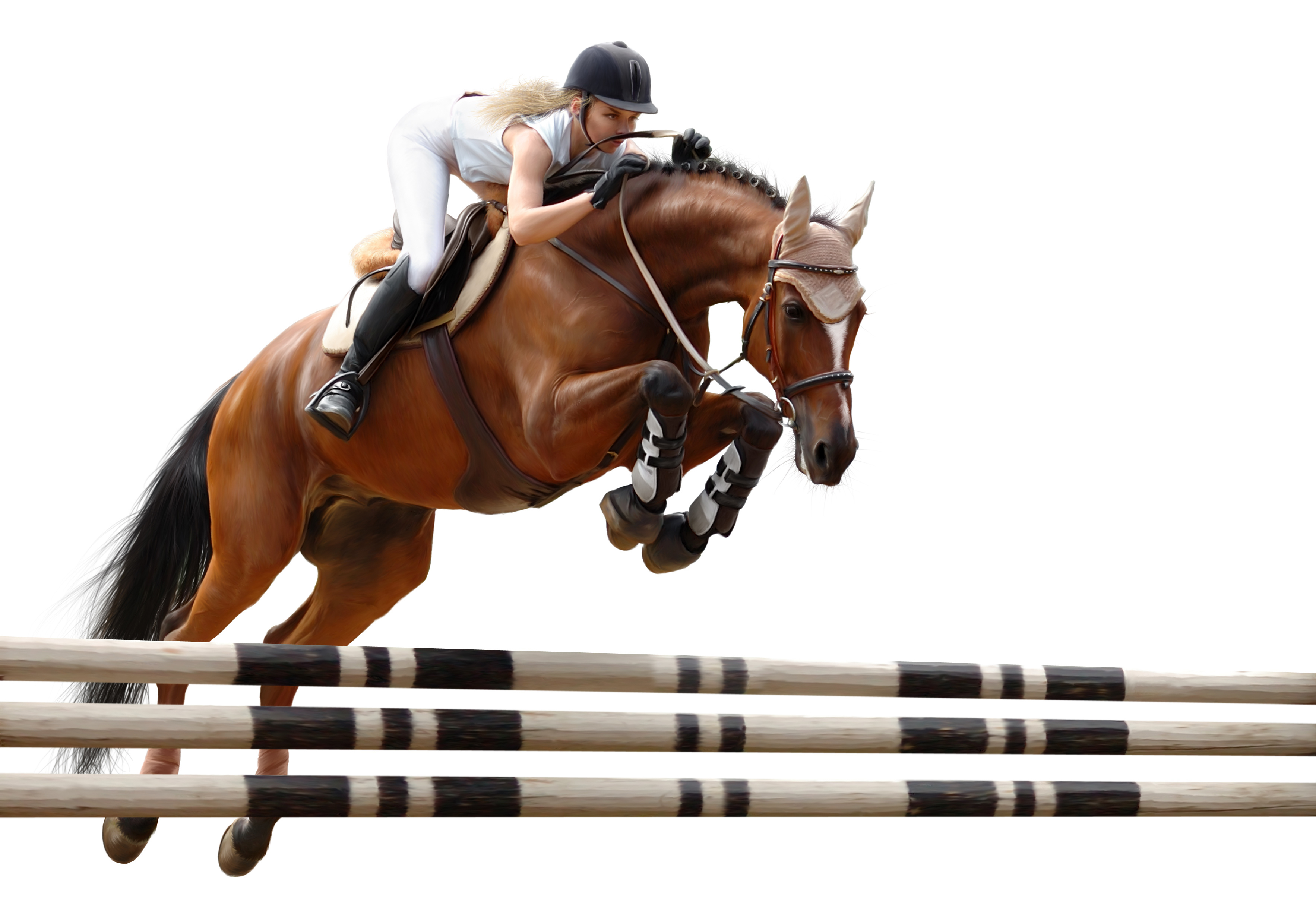 3532x2453 - Show Jumping Wallpapers 12