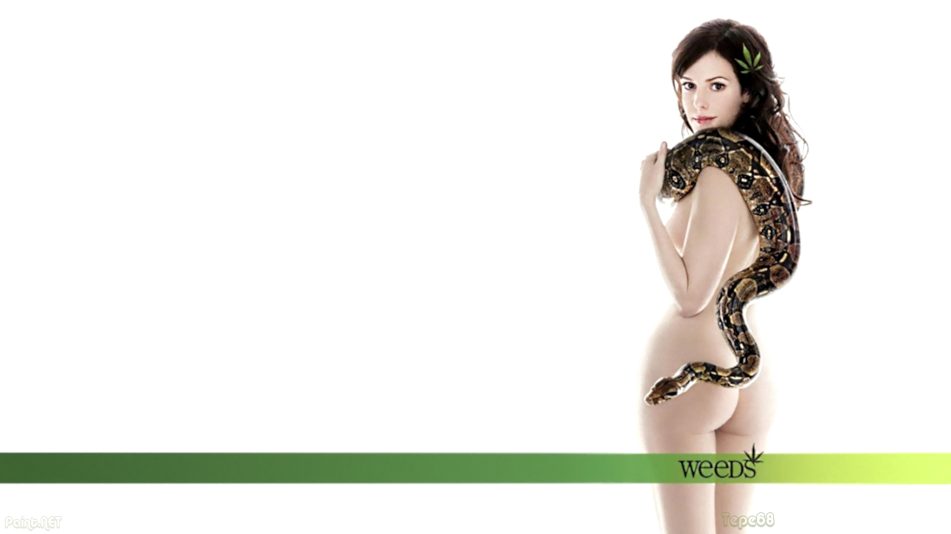 1956x1100 - Mary-Louise Parker Wallpapers 20