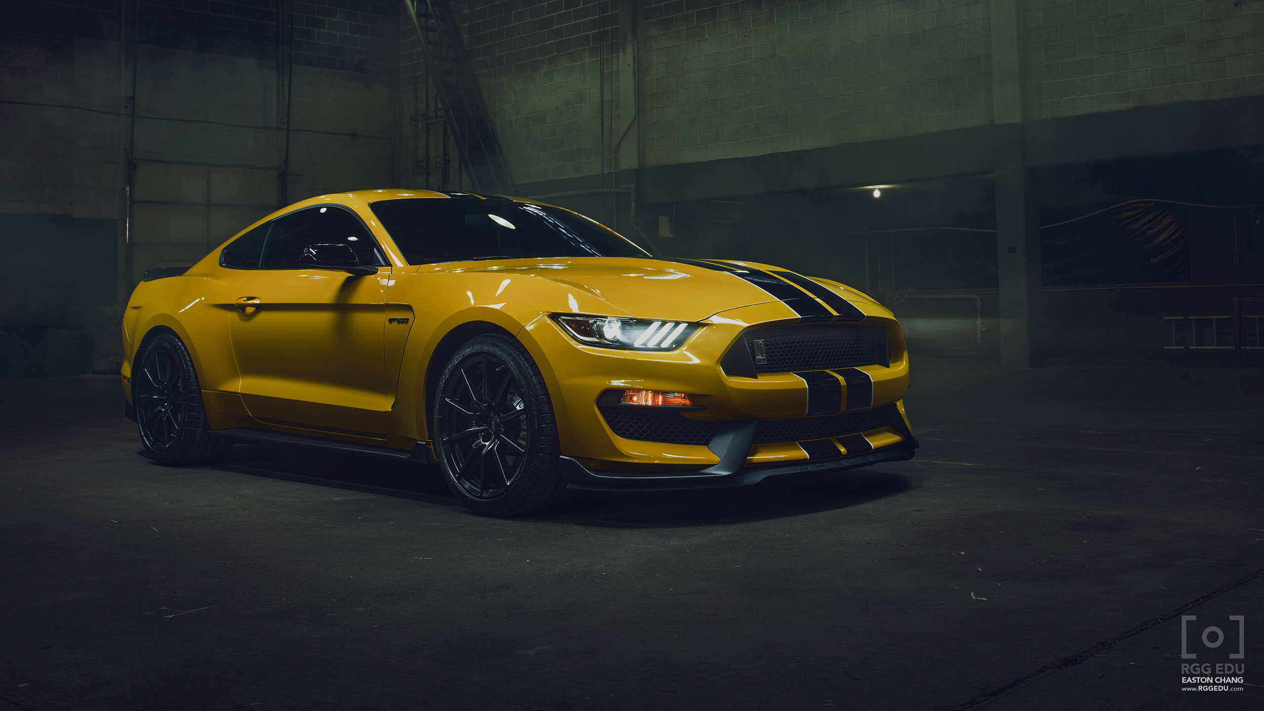 2560x1440 - Shelby Mustang GT 350 Wallpapers 18