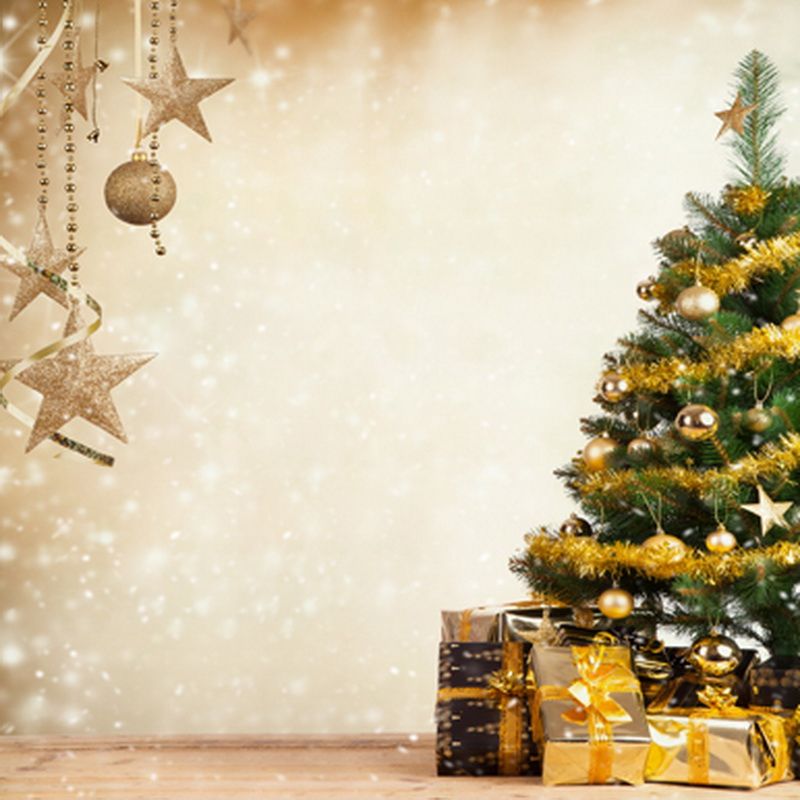 800x800 - Christmas Trees Backgrounds 48