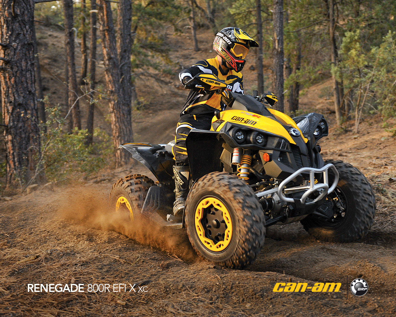 1280x1024 - Can-Am Wallpapers 19