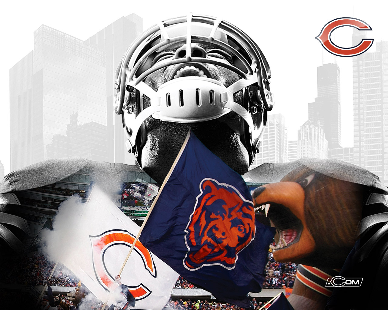 1280x1024 - Chicago Bears Wallpapers 5