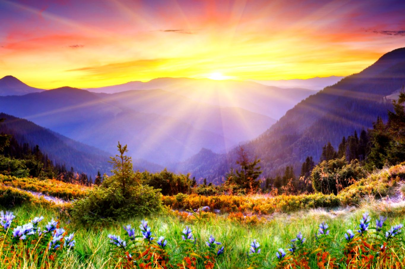 Cool Backgrounds Of Nature