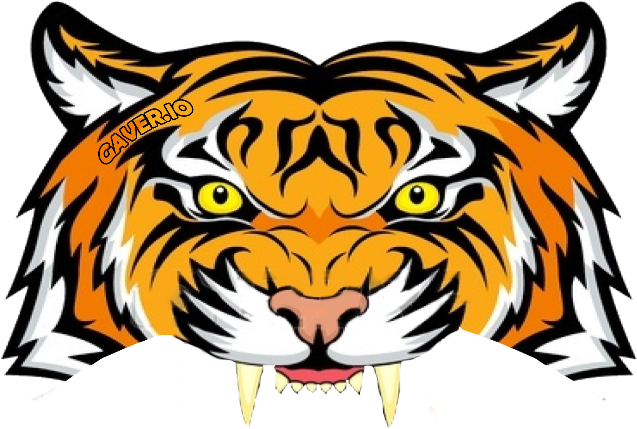 1270x856 - Animated Tiger 29