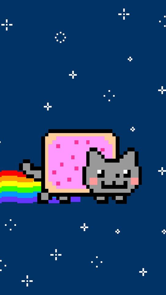 542x960 - Nyan Cat iPhone 7