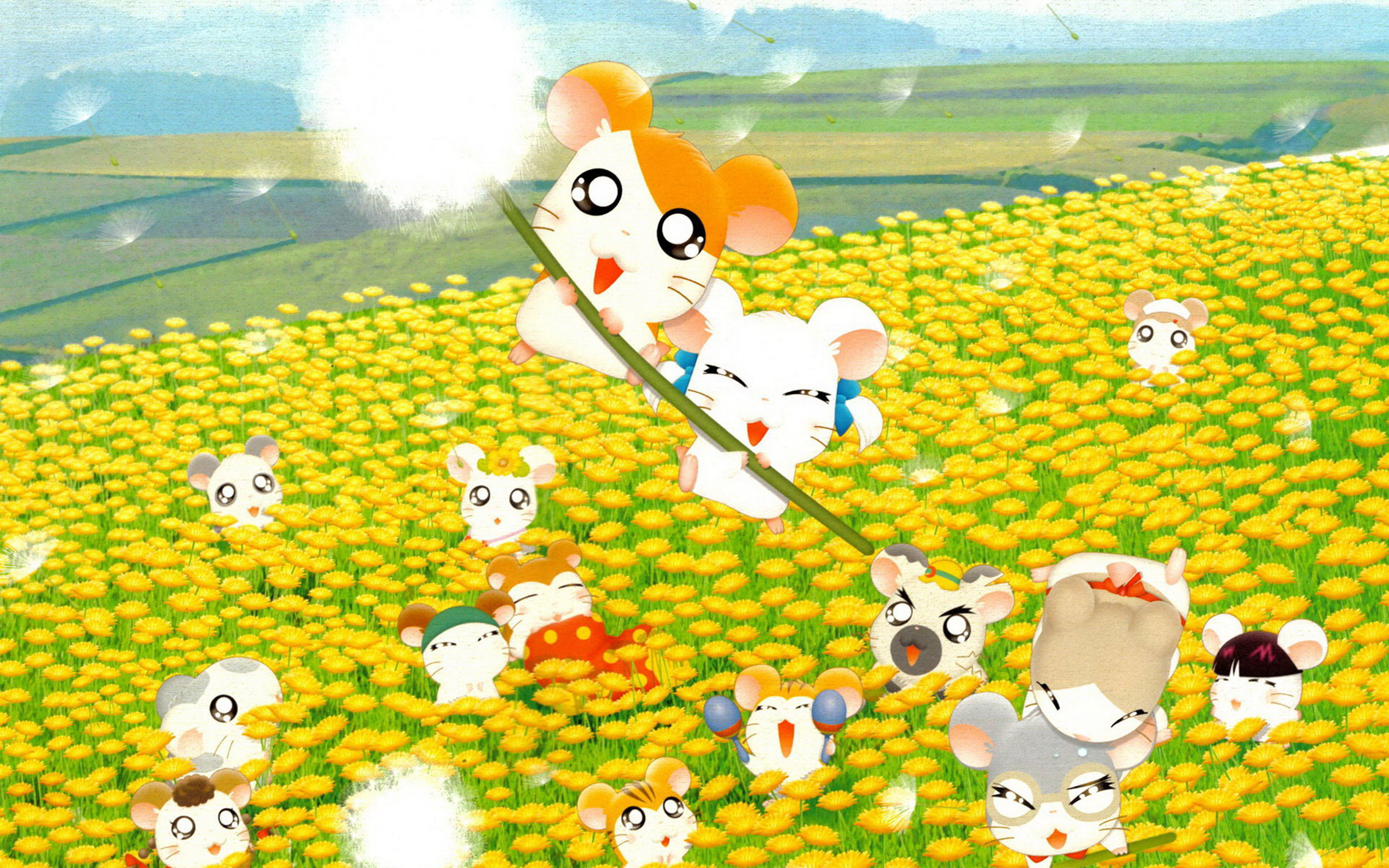 2560x1600 - Hamtaro Background 2