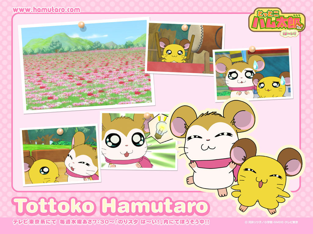 1024x768 - Hamtaro Background 27
