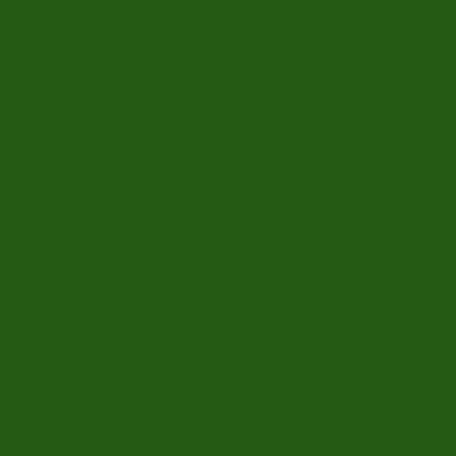 900x900 - Solid Green 24
