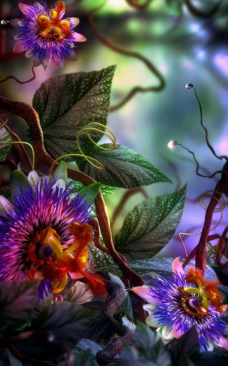 800x1280 - Passion Flower Wallpapers 23