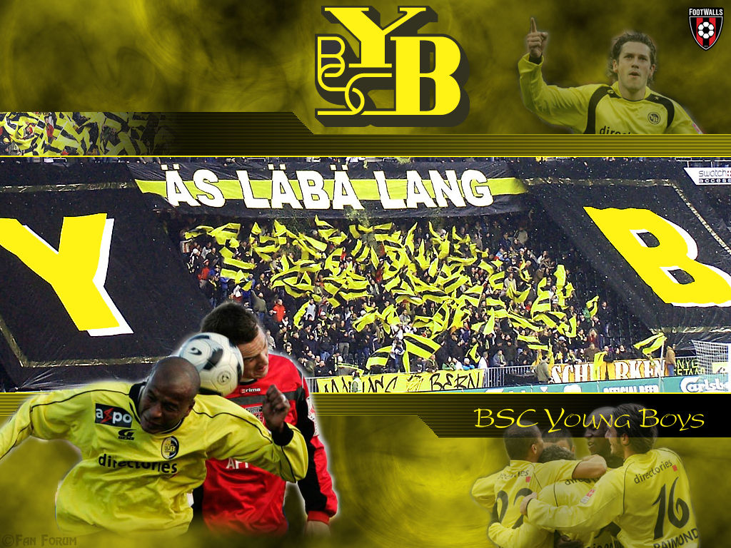 1024x768 - BSC Young Boys Wallpapers 18