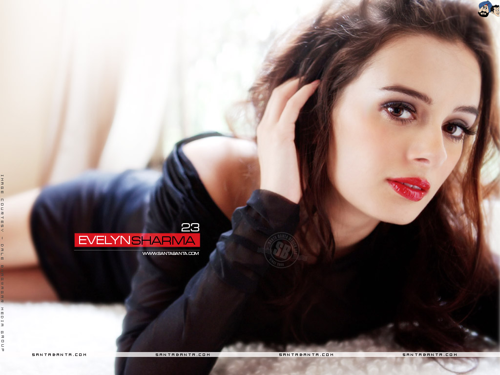 1024x768 - Evelyn Sharma Wallpapers 19
