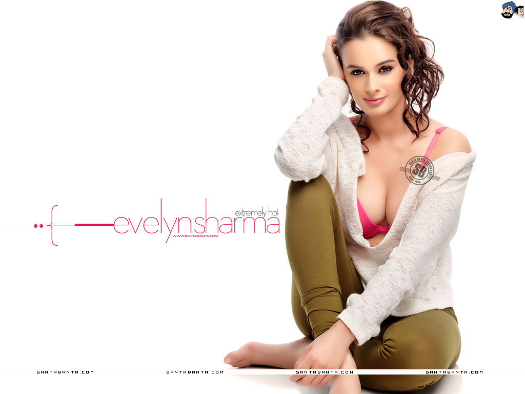 1024x768 - Evelyn Sharma Wallpapers 18