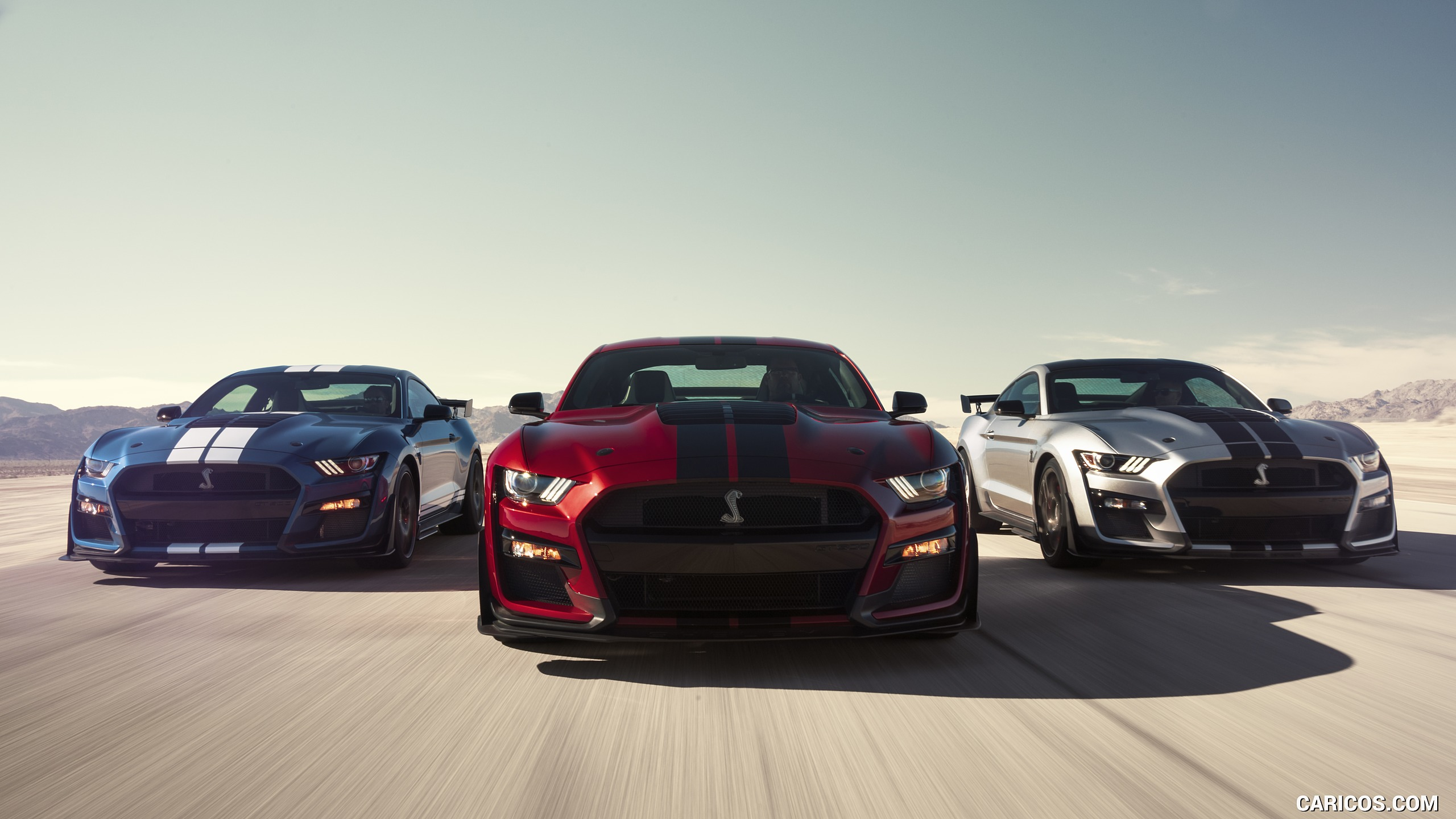 2560x1440 - Ford Mustang GT500 Wallpapers 27