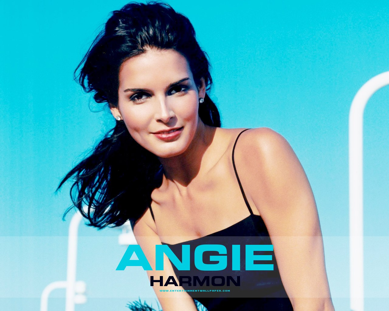 1280x1024 - Angie Harmon Wallpapers 24