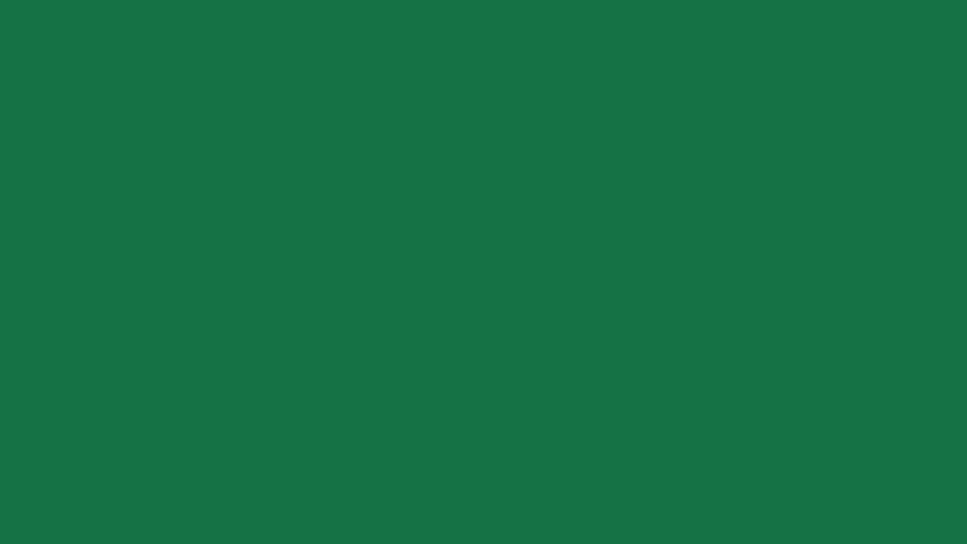 1920x1080 - Solid Green 21