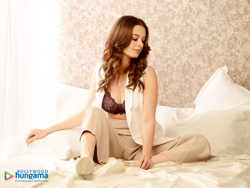 1024x768 - Evelyn Sharma Wallpapers 10