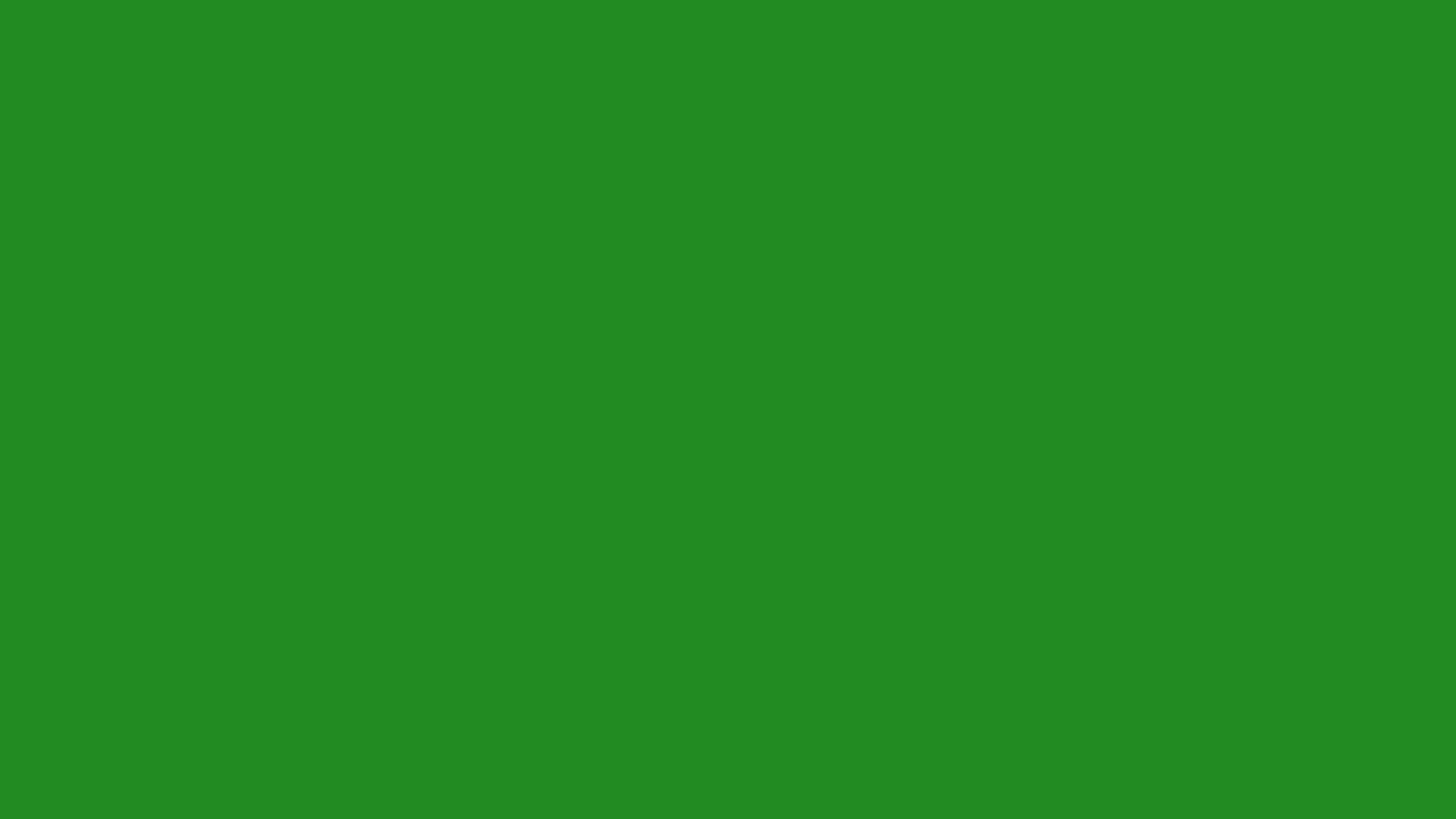 2560x1440 - Solid Green 28