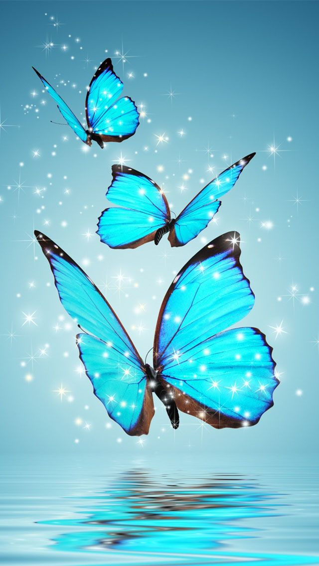 640x1136 - Pretty Butterfly Backgrounds 14