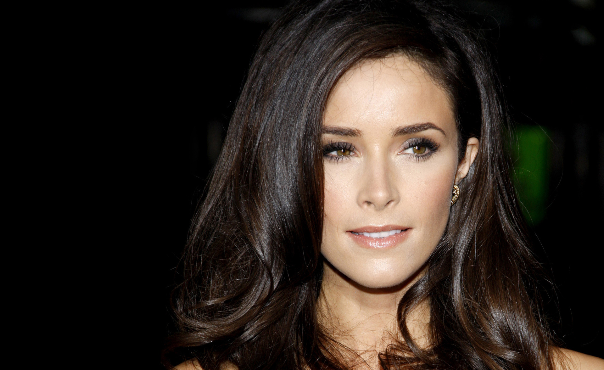 1920x1176 - Abigail Spencer Wallpapers 21