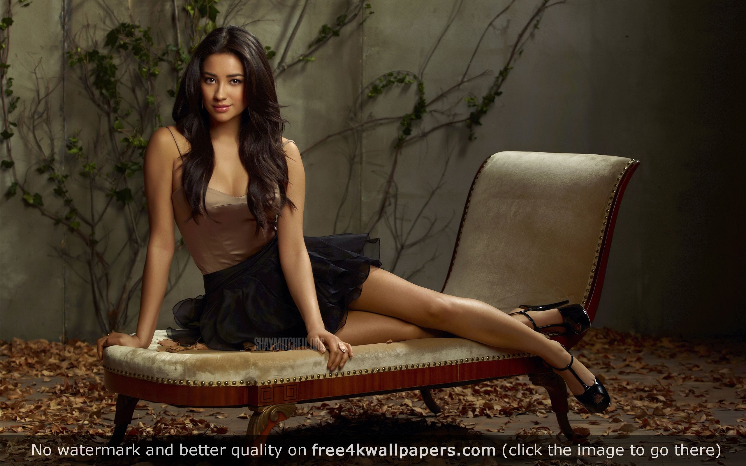2560x1600 - Shay Mitchell Wallpapers 14