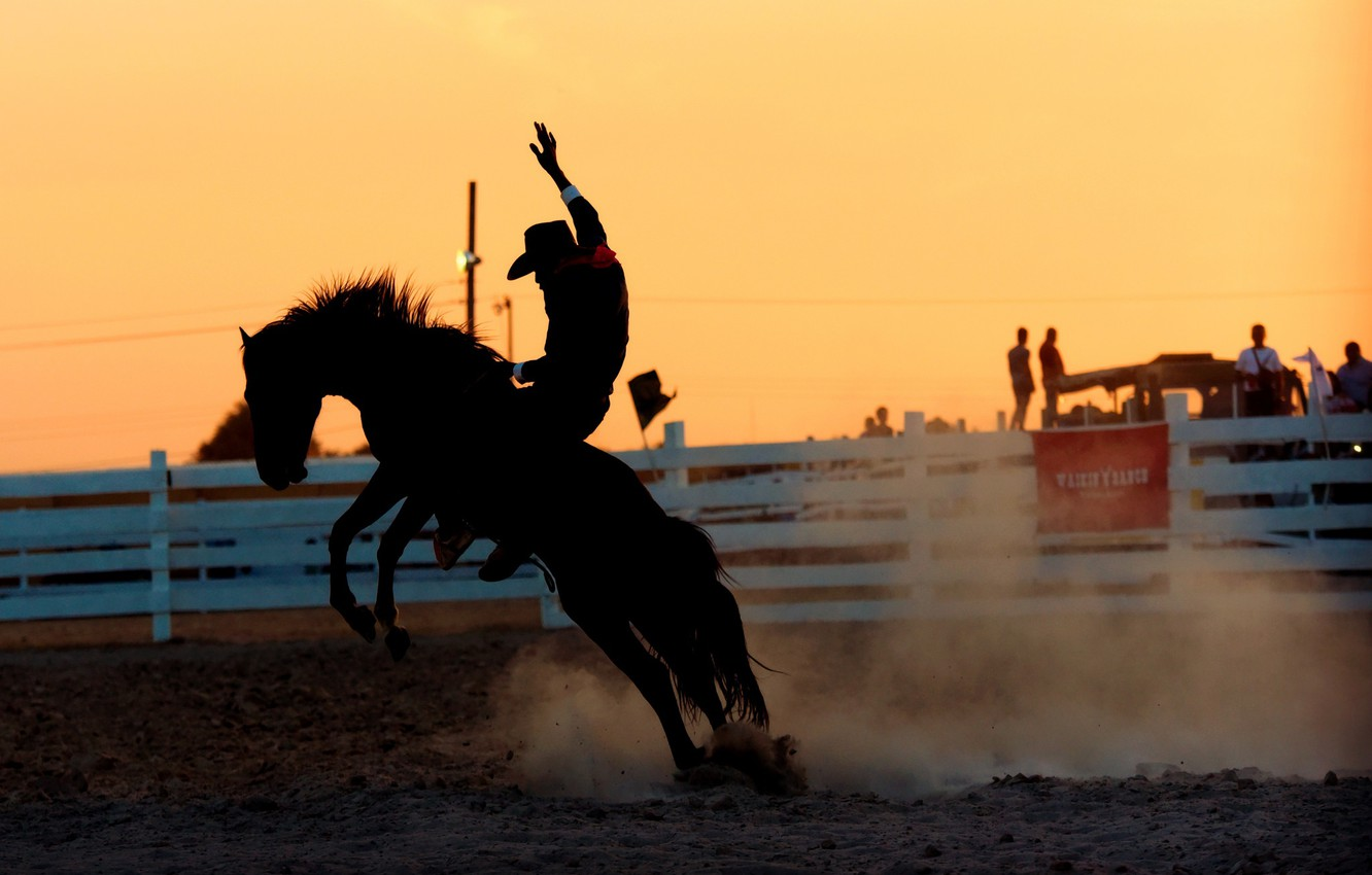 1332x850 - Rodeo Wallpapers 21