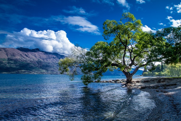 Lake Wakatipu Wallpapers