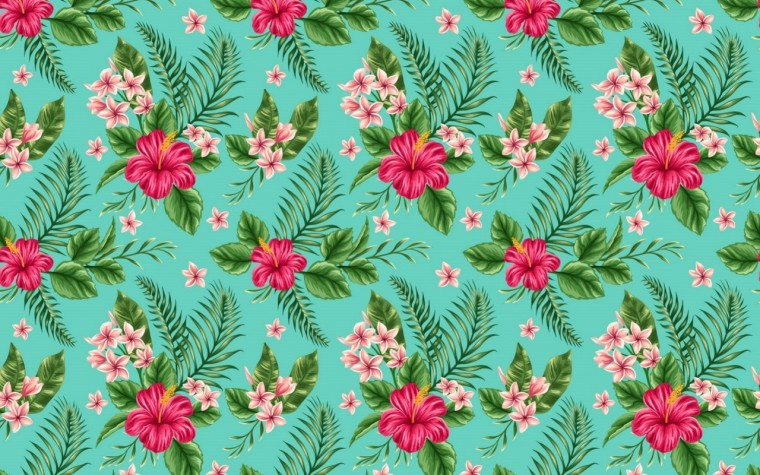 Hibiscus Wallpapers