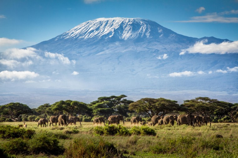 Mount Kilimanjaro Wallpapers