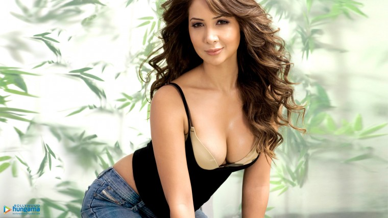 Kim Sharma Wallpapers