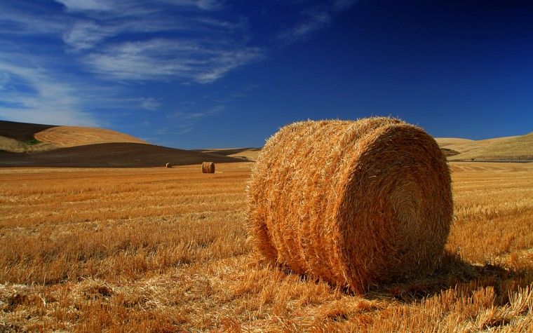 Haystack Wallpapers