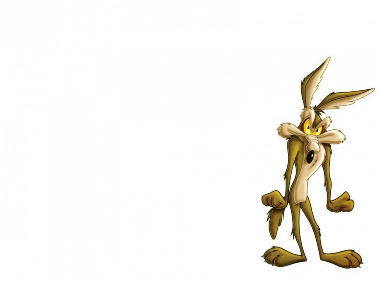 Wile E Coyote Wallpapers
