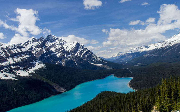 Peyto Lake Wallpapers