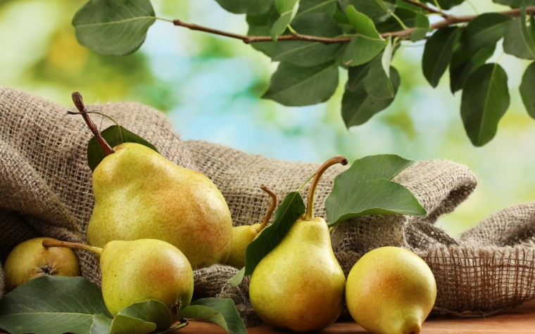 Pear Wallpapers