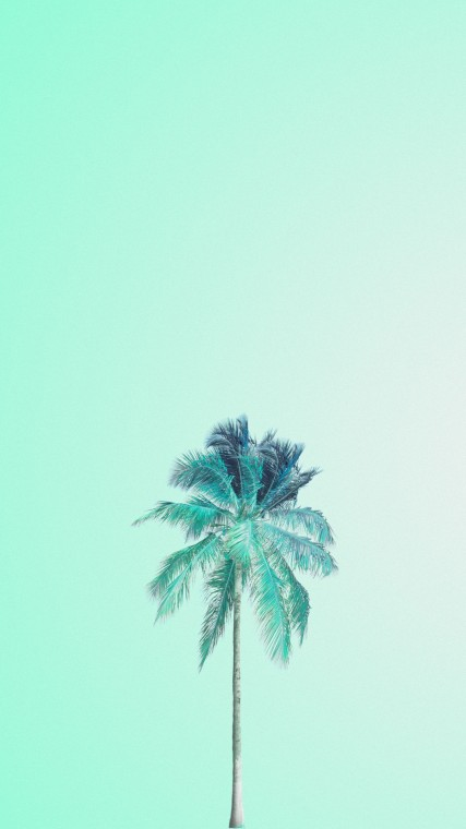 Mint Wallpapers