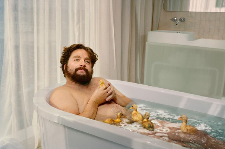 Zach Galifianakis Wallpapers