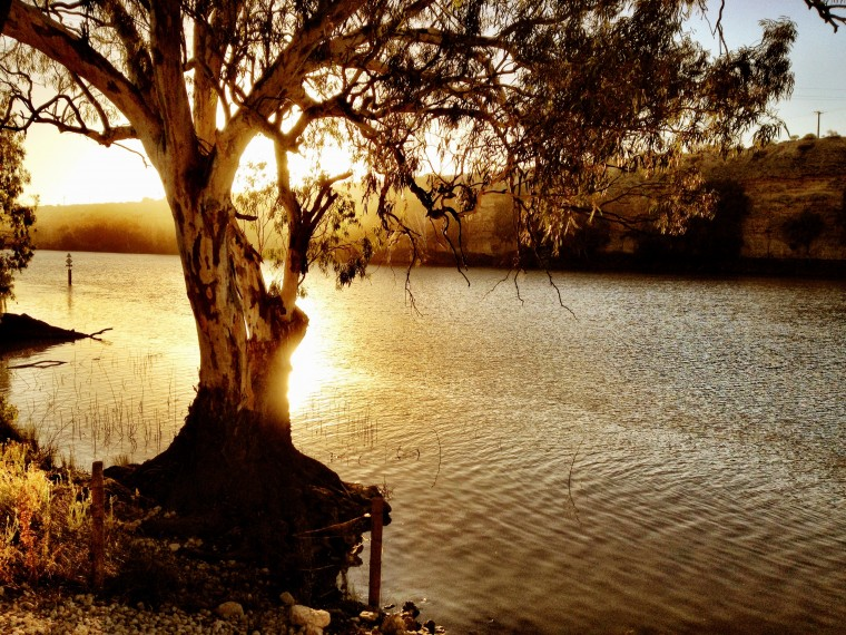 Murray River Wallpapers